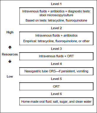 iv rehydration guidelines adults