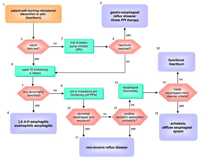 English   World Gastroenterology Organisation