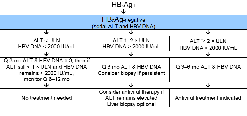 treating chronic hepatitis c essay