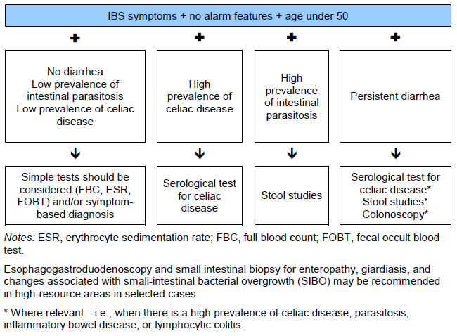 A Simple Guide to Irritable Bowel Syndrome and Colon Diseases (A Simple Guide to Medical Conditions)